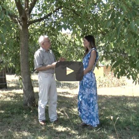4 Monate Demenzmagazin – Video